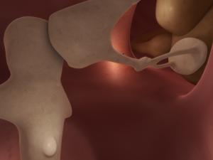 Interacoustics 3d animation